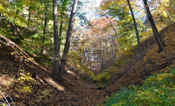 Heth's Run ravine